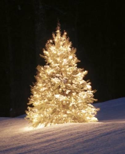 albero_natale_2