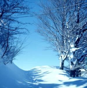 vento d'inverno