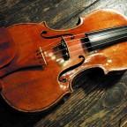 Il Bosco dei Violini