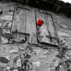 Bussa la rosa